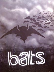 BATS vzw
