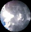 weatherF