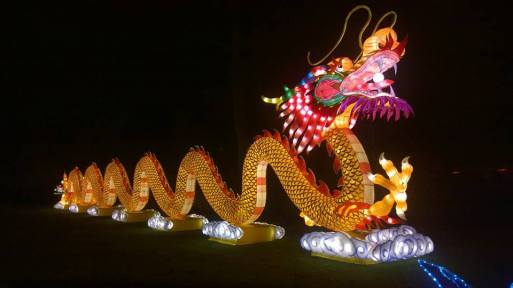 chinalightdragon